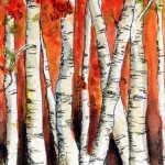 birches in red